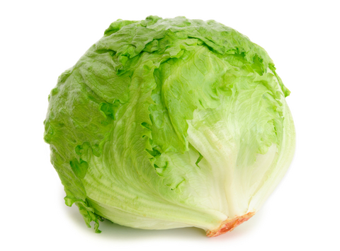 señor lettuce